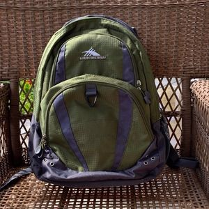 High Sierra Backpack with Laptop Sleeve